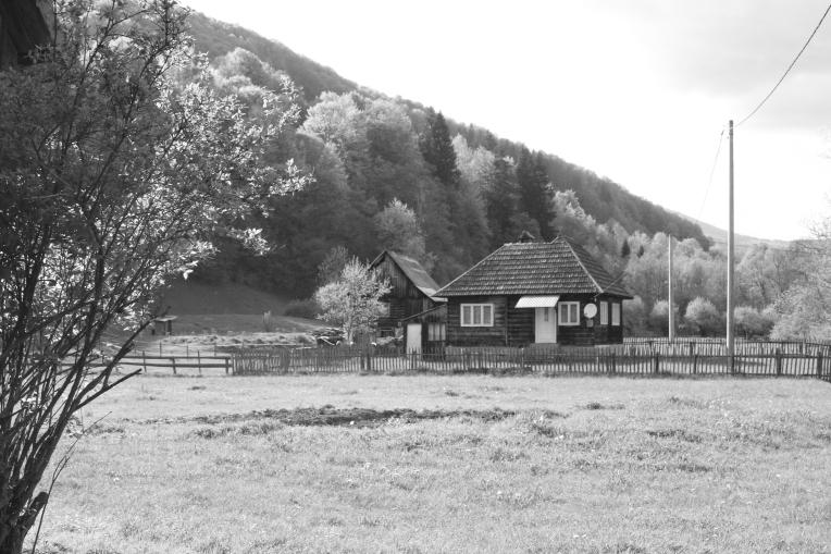 Village de Târșă
